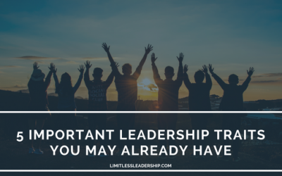 5 Important Leadership Traits You May Already Have